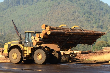 Envirnomentally Safe Hydraulic Oils works with heavy duty Forestry Equipment