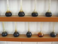 Conventional vs. Synthetic Oil Comparisons